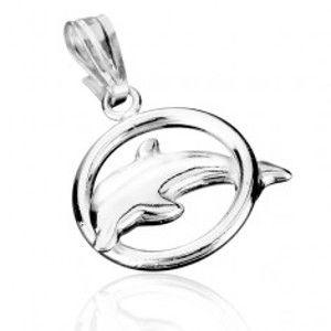 Šperky eshop - Strieborný prívesok 925 - delfín skákajúci cez obruč AB7.04